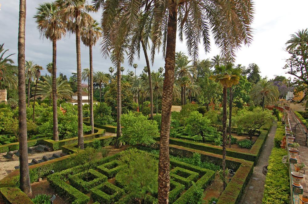 Лабиринты из кустов в Севильском Алькасар