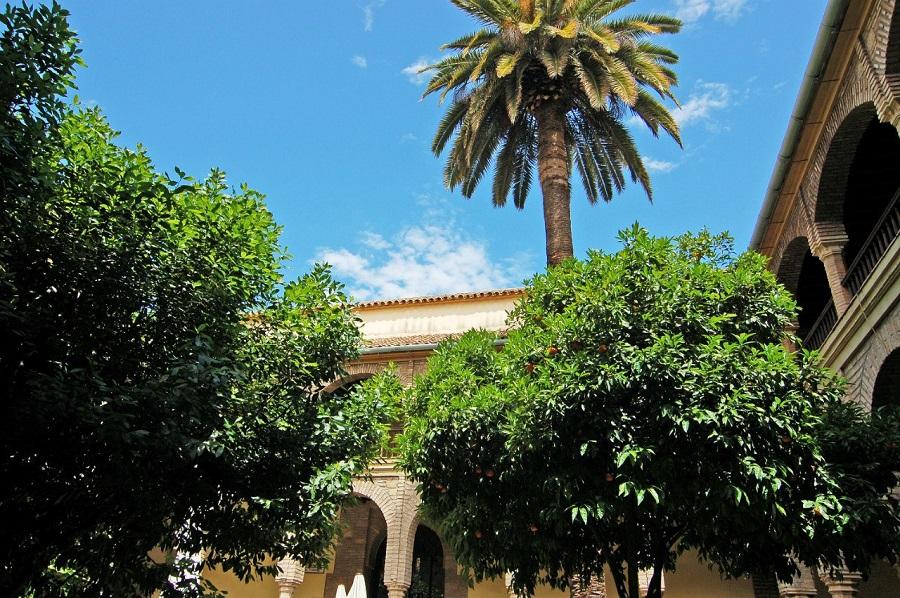 Апельсиновый дворик рядом с Мескитой