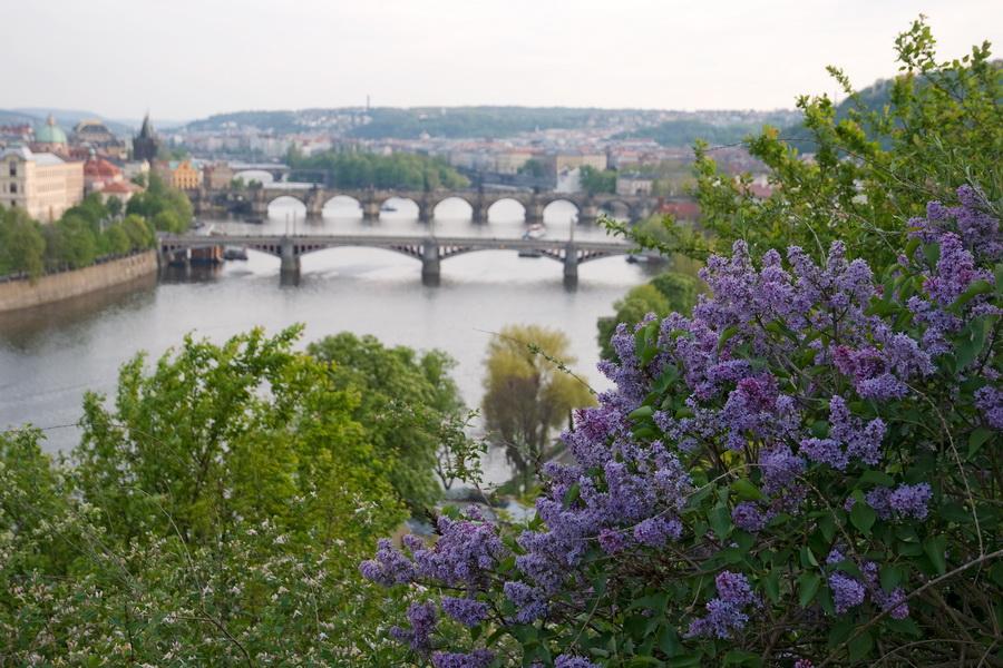 Смотровая площадка в Праге